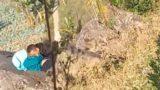 Ngintip Mesum Diatas Bukit Siang-siang